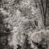 What Remains of the Swift River Leaving Quabbin, Quabbin Park thumbnail