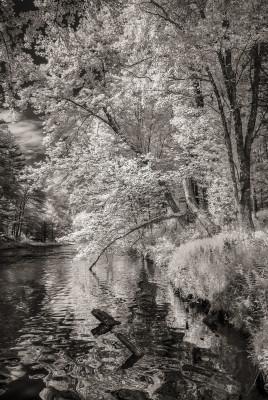 What Remains of the Swift River Leaving Quabbin, Quabbin Park