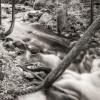 Fever Brook, New Salem thumbnail