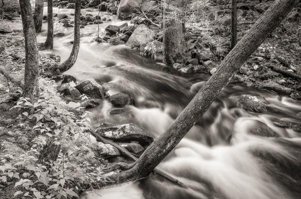 Fever Brook, New Salem