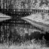 Footbridge behind Alewife thumbnail
