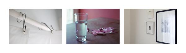 Petals and Glass
