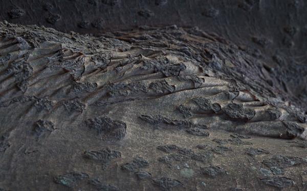 8. Hills Below Taseppi Ridge