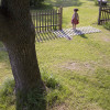 9_ThompsonAvishai_Fence thumbnail