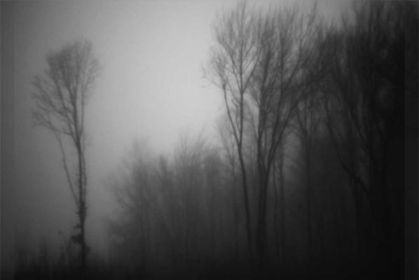 04-Afternoon Fog