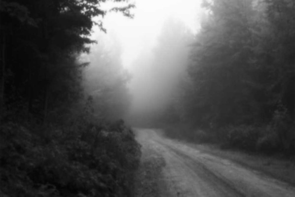 06-Foggy Road
