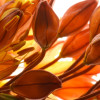 Flora-4 thumbnail
