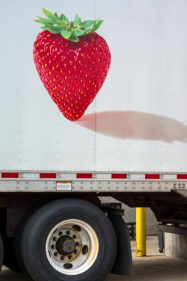 08-berry_slash_truck_08