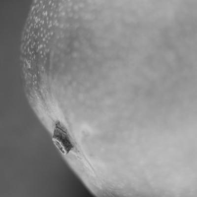 Terra Novus--3