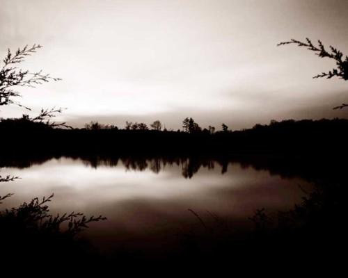 03_Mother-Nature's-Eisle_Peters-Valley_Roak