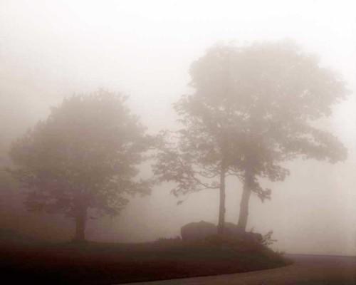 04_Mother-Nature's-Eisle_Blue-Ridge-Parkway_Roak